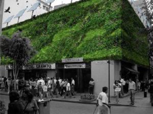 Asi lucirán los jardines verticales